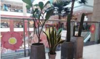 遼寧玻璃鋼雕塑