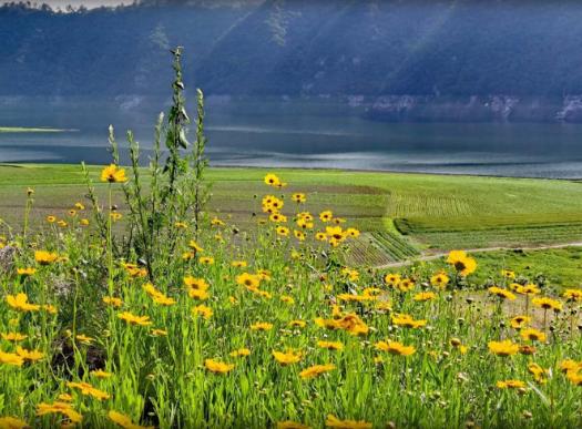 丹东原生态旅游