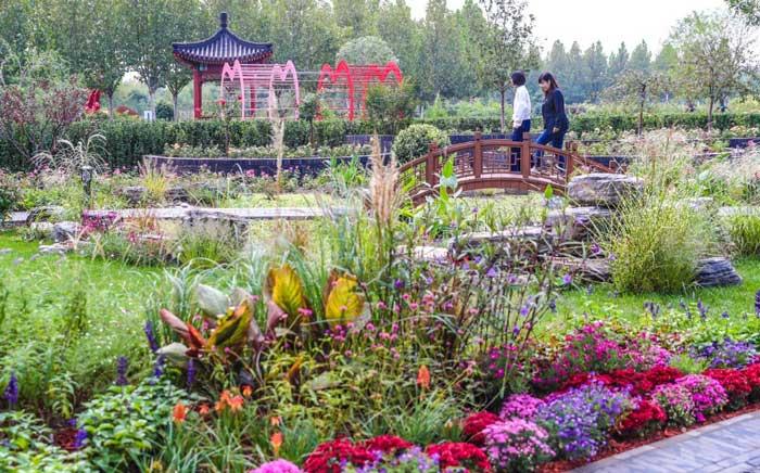 能工巧匠齐上阵,大兴VIP快速通道月季园新增33个主题园