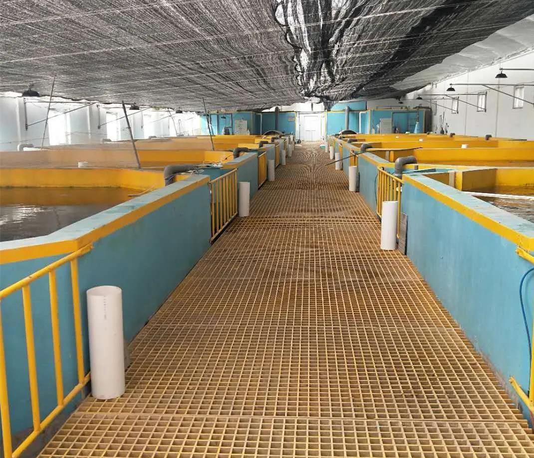 海容模塊大棚