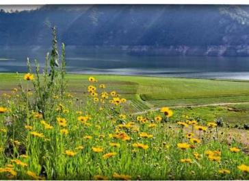 绿江原生态旅游
