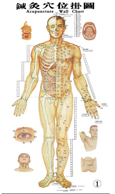 3,针灸疗法说明