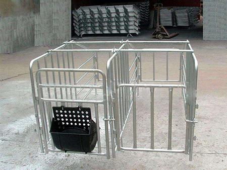 保育豬技術要點