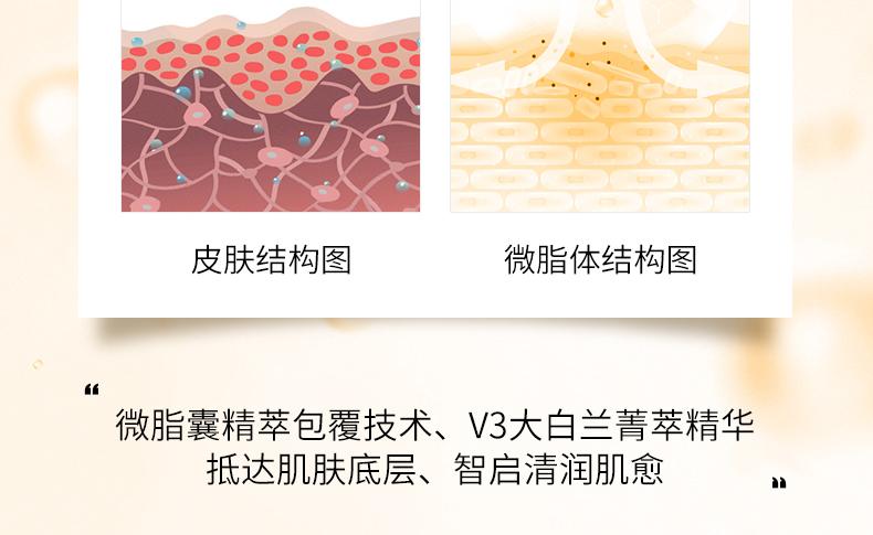 面部修護精華肌底液