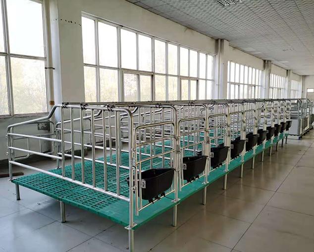 母豬限位欄工藝廠