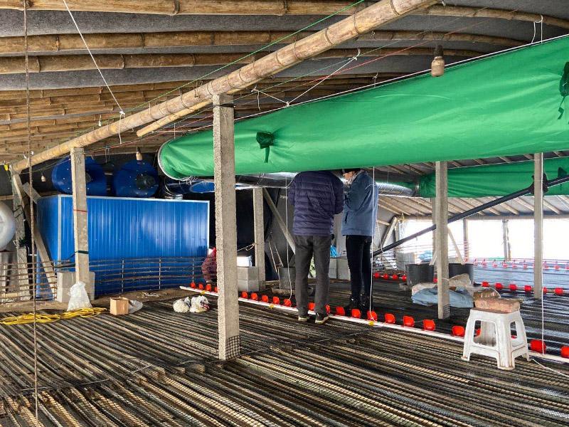 养鸭场用取暖设备