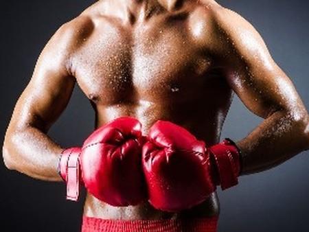 沈阳职业拳击