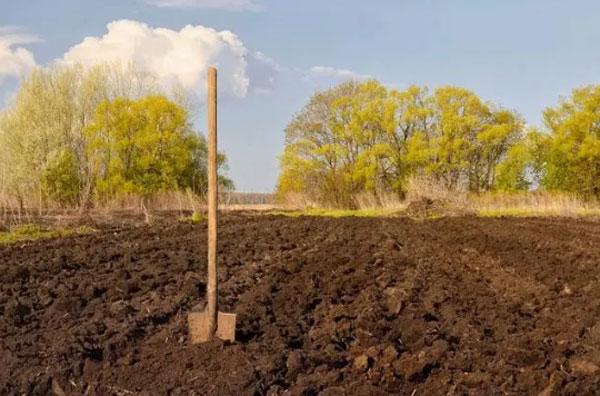 每亩补偿10万元,永·久退出土地,你愿意吗?
