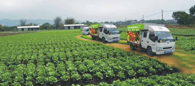 农产品配送