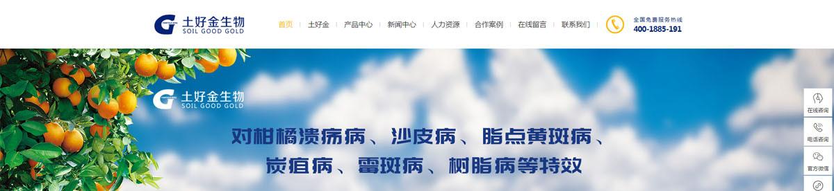 郑州网页设计