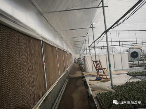 风机湿帘是现代温室重要功能