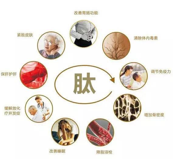 牛骨胶原蛋白肽粉(500g装)
