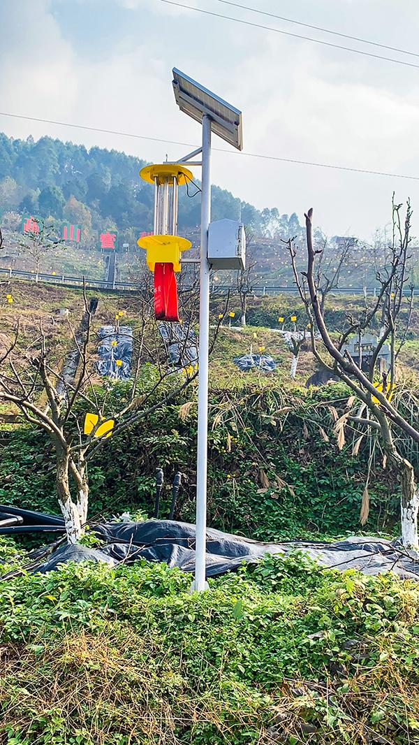 華鎣山蜜梨基地智慧農業物聯網信息化建設暨智慧灌溉項目