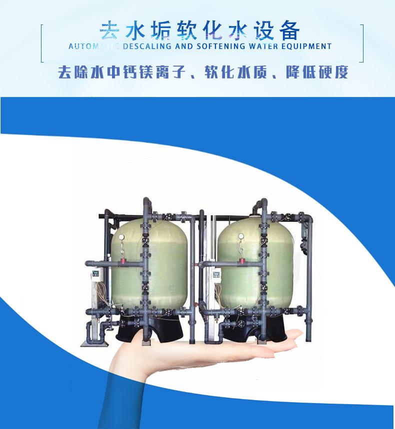 雙罐雙閥大中型軟水處理設備