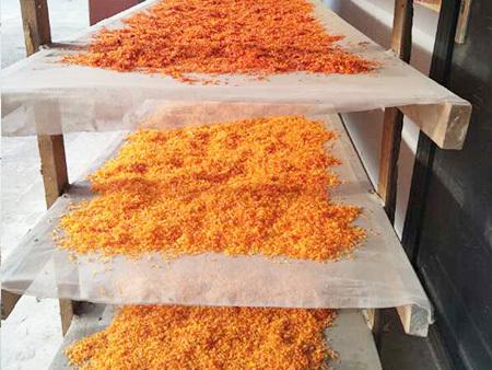 卫红花籽油供应厂家