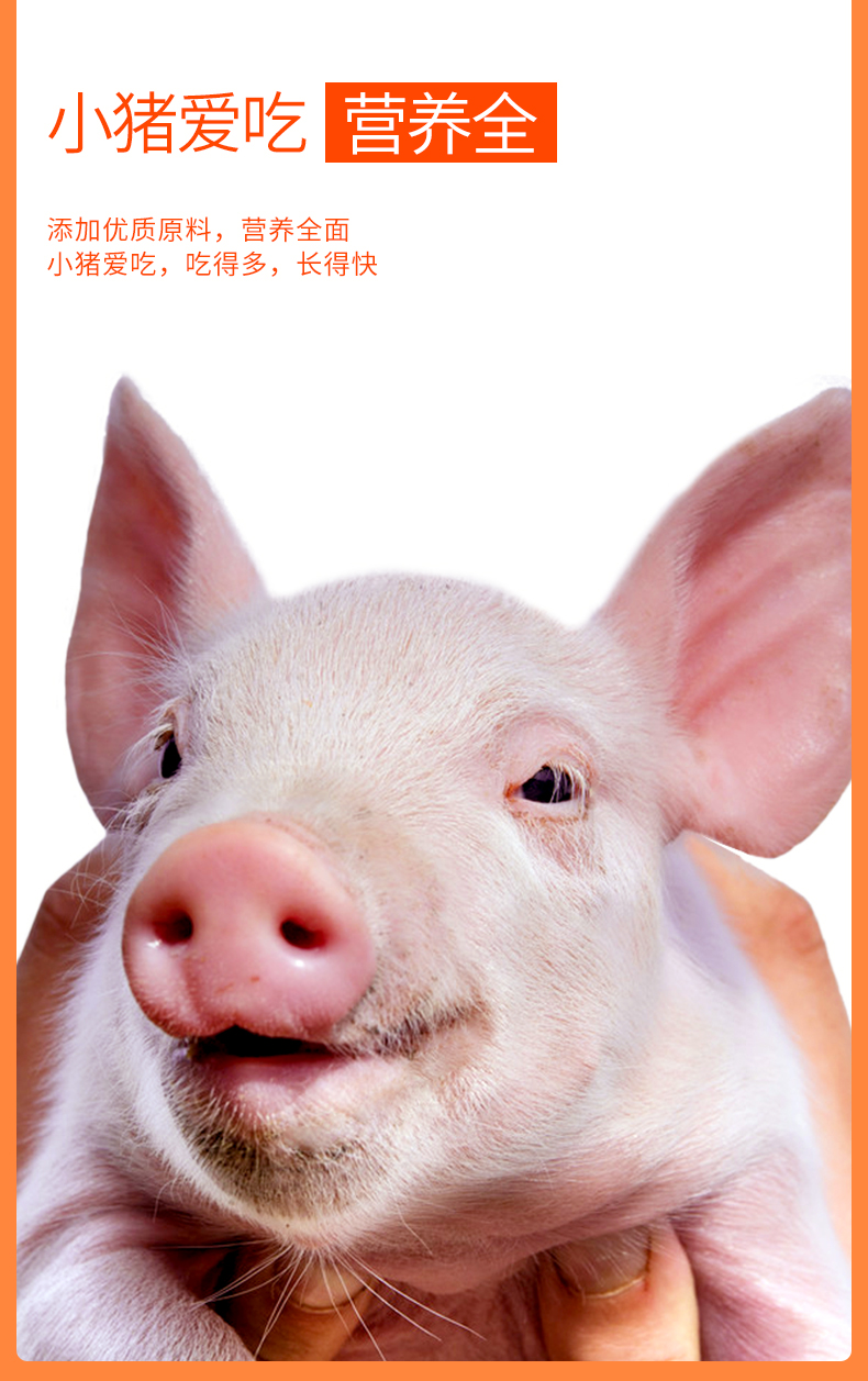 乳猪开口料