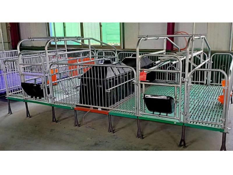 养殖配套设备母猪产床