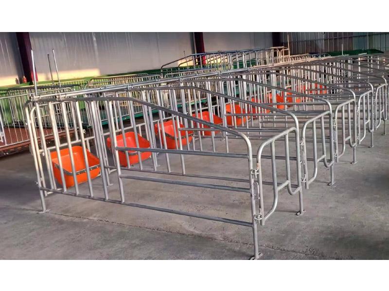 养猪配套设备限位栏