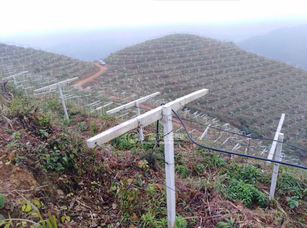 水肥一体化项目