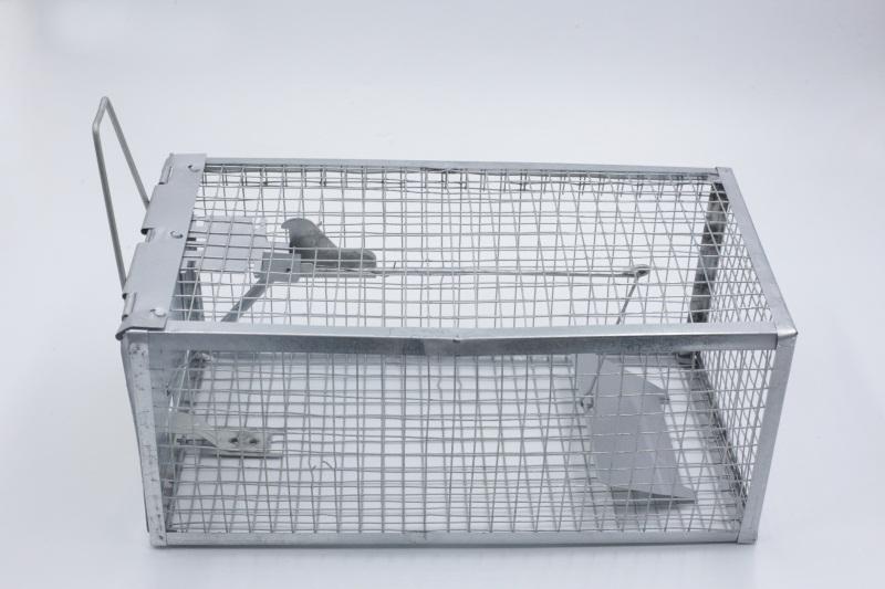 便捷型捕鼠器