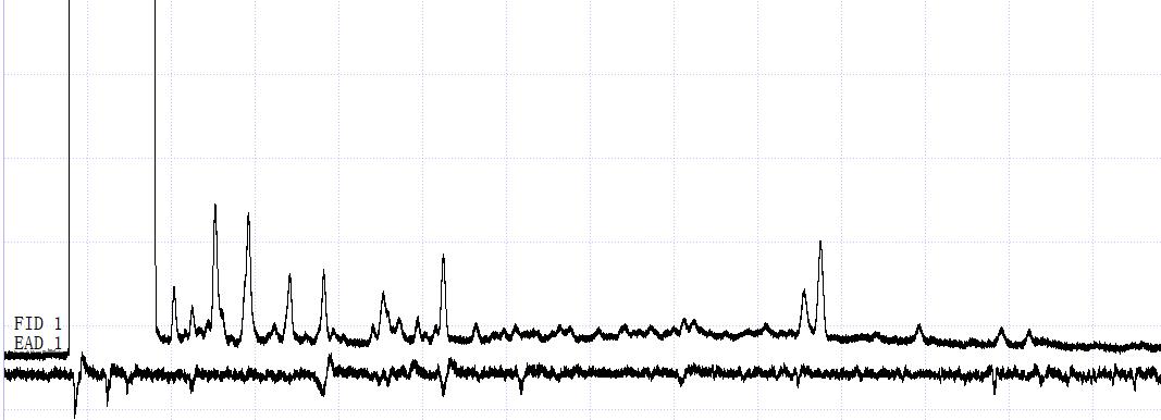 触角电位仪