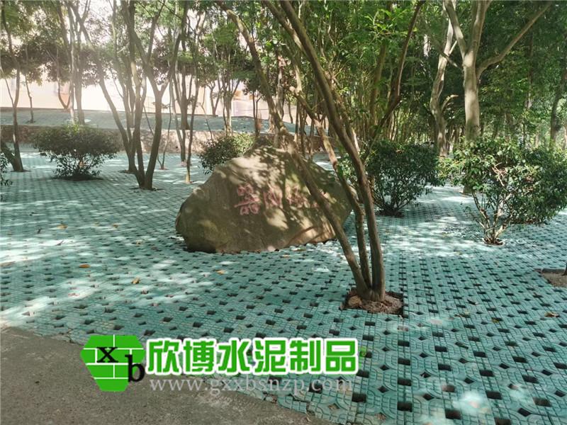 广西植草砖
