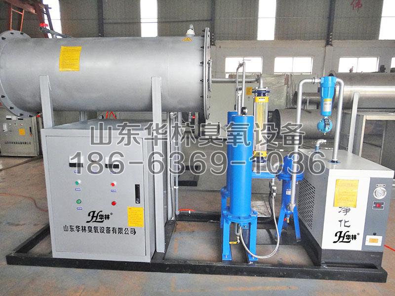 净化水用臭氧发生器