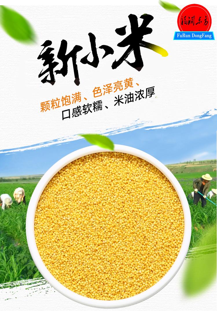 福潤東方小米